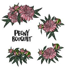 peony bouquet vector image