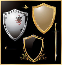 shield - set vector image