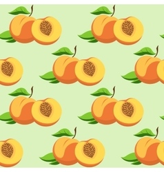 fruit and leaves of peach vector image vector image