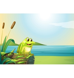 A frog above a trunk at the riverbank vector image vector image