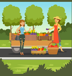 farmer woman selling fresh vegetables from wooden vector image vector image