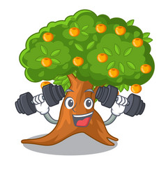 fitness orange tree isolated with the mascot vector image