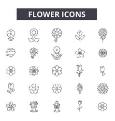flower line icons signs set outline vector image