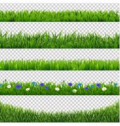 Green grass collection border isolated vector