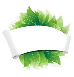 Green leaves and paper scroll vector