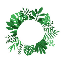 green leaves circle frame vector image