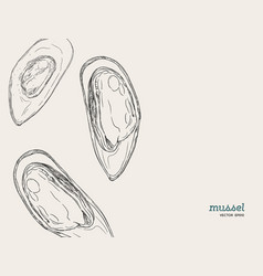 hand draw mussels vector image vector image