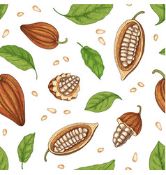 natural seamless pattern with whole and cut ripe vector image