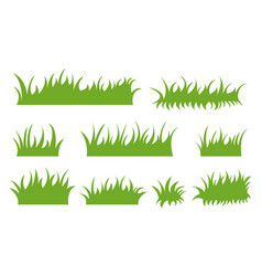 set drawn green grass on white background vector image