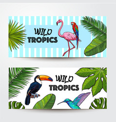 Banners with exotic tropical birds palm leaves vector