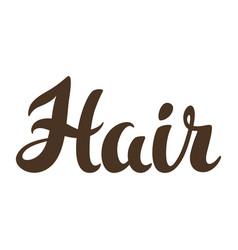 Hair word lettering vector