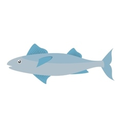 Mackerel fish sea life design icon vector
