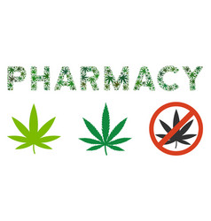 pharmacy label composition of hemp leaves vector image