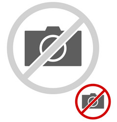 simple universal no photo sign vector image