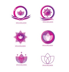 Spa logo icon set vector image