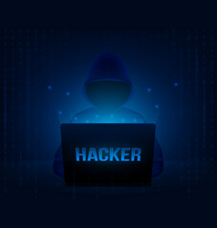 creative of computer hacker vector image