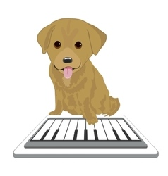Labrador puppy playing with piano app vector image