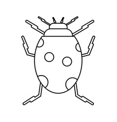 Ladybug insect nature icon thin line vector