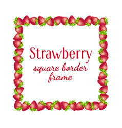strawberry square border frame vector image