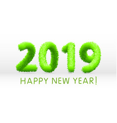 wooly green hairy shaggy wool 2019 happy new year vector image