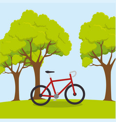 Bicycle sport wellness lifestyle vector