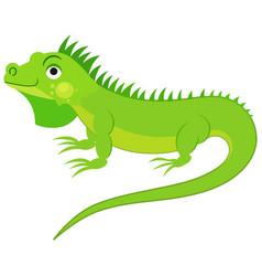 cute green iguana isolated on white background fl vector image