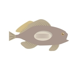 Grouper fish side view sea life vector