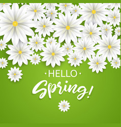 Hello springhand lettering with white flowers vector
