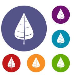 Poplar leaf icons set vector