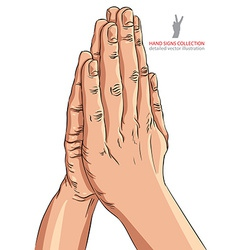 Praying hands detailed vector
