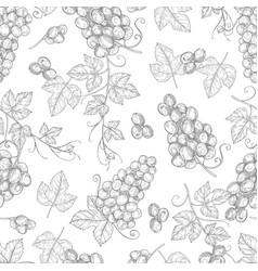 sketch grapes seamless pattern texture vector image