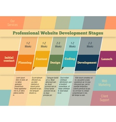 Stages in web design and development vector image