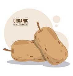 organic healthy food nutrition vector image vector image