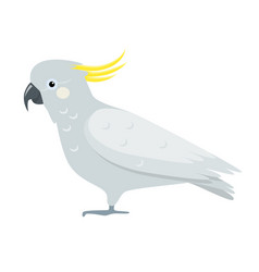 cockatoo parrot icon in flat style vector image