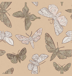 background with hand drawn moth vector image