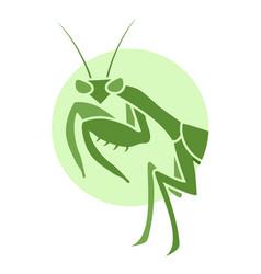 Creative mantis vector
