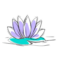 lotus flower drawing on white background vector image