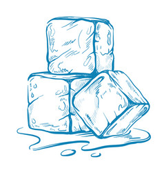 Sketch of ice cubes vector