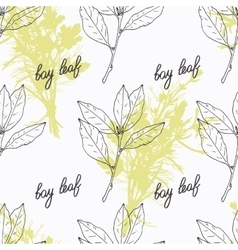 Hand drawn bay leaf branch and handwritten sign vector image vector image