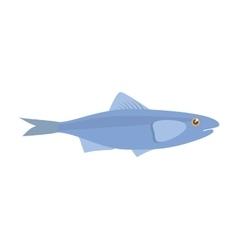 Sardine sea food sealife traditional vector