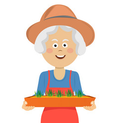 happy elderly gardener woman holding seeding box vector image vector image