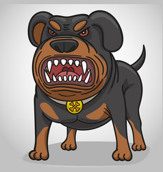 cartoon angry dog of breed a rottweiler vector image