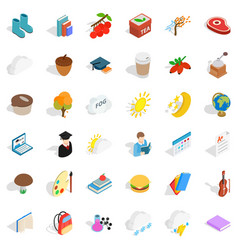 Cold icons set isometric style vector