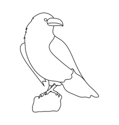 Crow of viking god icon in outline style isolated vector