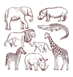 different animals savana and africa vector image