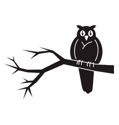 owl on tree icon simple style vector image