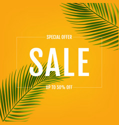sale banner with palm leaf vector image