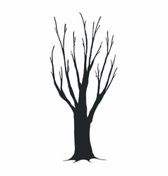 Tree silhouette on white background vector