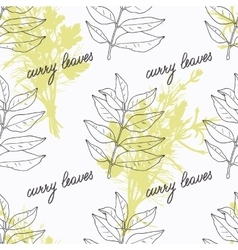 Hand drawn curry leaves branch and handwritten vector image