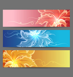 colorful flower banners set vector image vector image